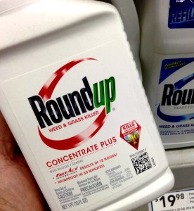 Roundup Cancer Side Effects